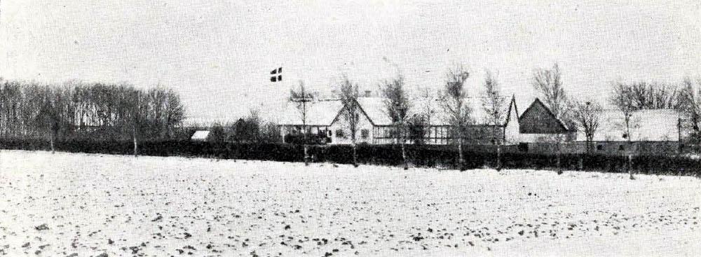 Risegaard i Aaker - Bygninger er til dels nye, opførte af Grundmur og Bindingsværk og tækkede dels med Straa, dels med Tegl.