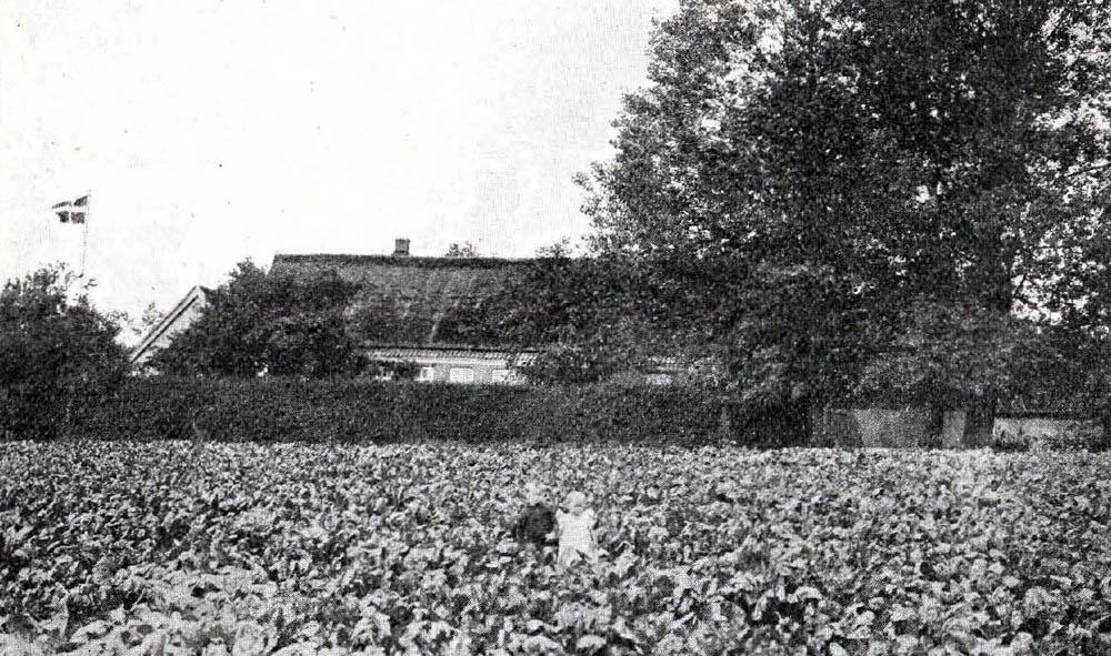Store Bukkegaard i Aaker - Bygninger er opførte dels af Bindingsværk, dels af Grundmur og tækkede med Straa, alle solide og velindrettede. Til Ejendommen hører en mindre Vindmølle til Formaling af egen Sæd og som Trækkraft for en Rundsav.